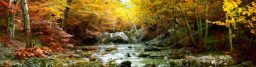 cropped-stock-photo-the-beautiful-waterfall-in-forest-autumn-long-exposure-40916359.jpg